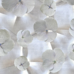 Meystyle Bloom behang